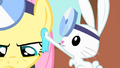 Angel wipes off Fluttershy's sweat S01E22.png