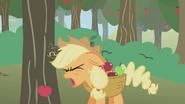 Applejack hitting her head S1E4