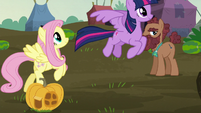 Twilight and Fluttershy fly to the McColts' home S5E23