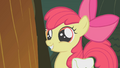 Apple Bloom cute grin S1E09.png