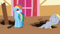 Derpy falling over again S2E14.png