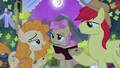 Pear Butter holding a pear seed S7E13.png