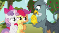 Apple Bloom says hello to Gabby S6E19.png