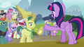 Twilight Sparkle addresses the reporter S7E14.png