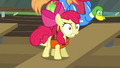 "Apple Bloom angry ""hey!"" S4E09.png"