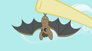 Bat S2E07.png