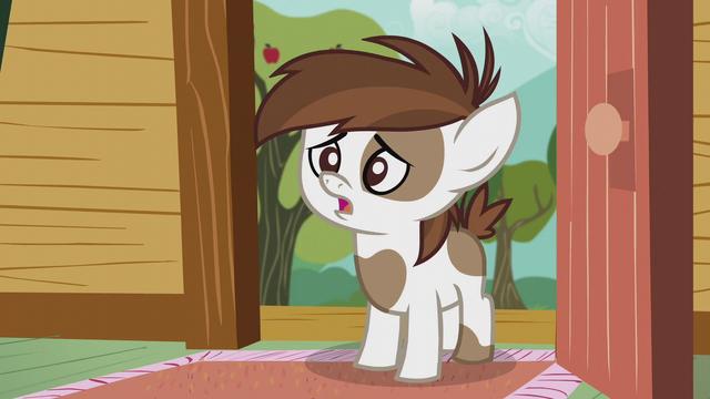 "File:Pip ""I'm running for student pony president"" S5E18.png"