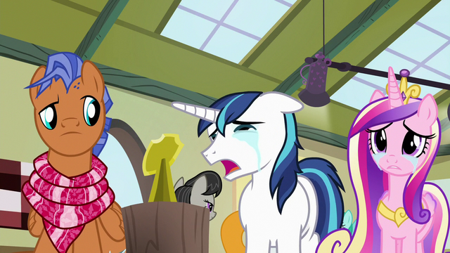 "File:Shining Armor ""it's small like her!"" S7E3.png"