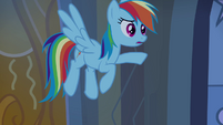 "Rainbow Dash ""why weren't you scared?"" S4E03"