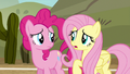 """Fluttershy """"we've been playing just awful"""" S6E18.png"""