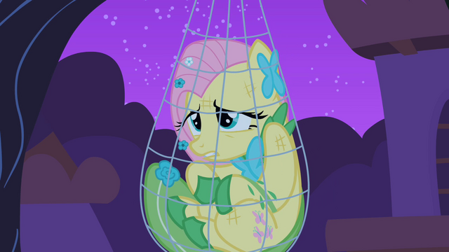 File:Fluttershy caught in her own trap S1E26.png