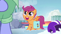 """Scootaloo """"nopony inspires me more than she does!"""" S7E7.png"""