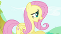 "Fluttershy ""It's getting awfully late"" S4E18.png"