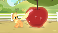 Applejack cleans the apple with her tail S4E07.png