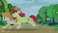 Bright Mac and Pear Butter run through the rain S7E13