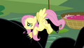 Fluttershy continues comforting Cerberus S2E20.png