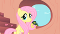 Fluttershy Hearth shape S1E16.png