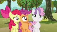 Apple Bloom and Scootaloo looks at Sweetie Belle S3E04