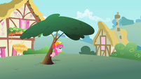 Pinkie Pie underneath tree S1E15