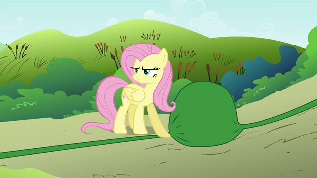 File:Fluttershy blocking water S2E19.png