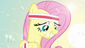 Fluttershy looking down S2E22.png