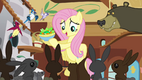 Fluttershy brings the animals food S3E13