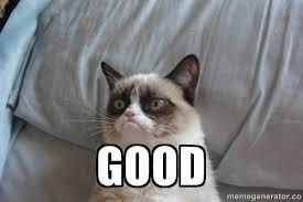 File:Grumpy cat 'good'.jpg