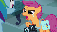 "Scootaloo ""I don't like what I found out!"" S7E7"