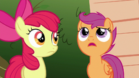 "Scootaloo ""just because it hasn't happened yet"" S6E19"
