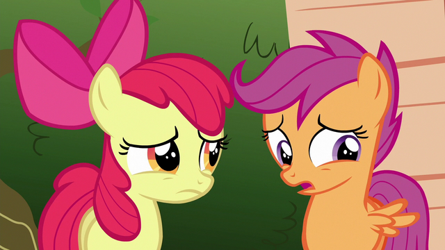 File:Scootaloo ruffling her wings S6E19.png