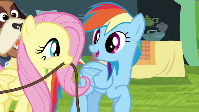 "File:Rainbow Dash ""we're home free!"" S4E22.png"