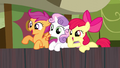 CMC cheering for Trouble Shoes S5E6.png