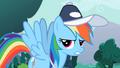 """Rainbow Dash """"Fine!"""" S2E07.png"""