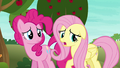 """Fluttershy """"our friends want us to win"""" S6E18.png"""
