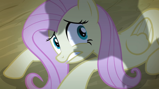 File:Fluttershy cowering down S4E07.png