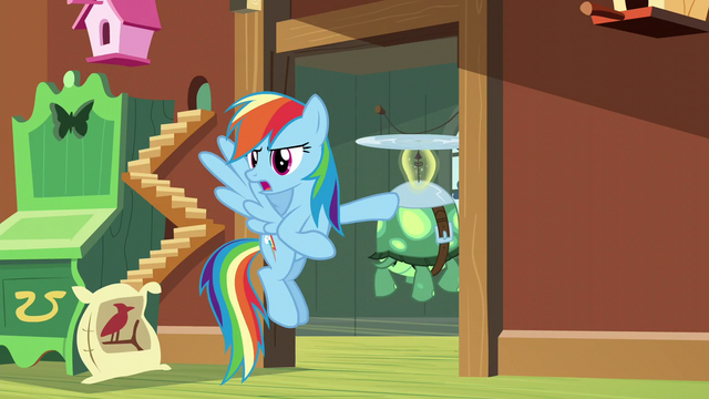 "File:Rainbow ""from a real reptile expert"" S5E5.png"