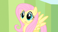 Fluttershy processing S1E20