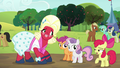 Apple Bloom introduces Orchard Blossom to her friends S5E17.png