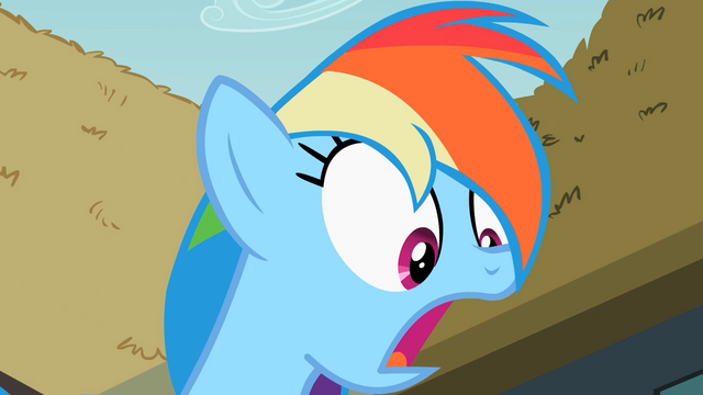 File:Rainbow Dash surprised S2E08.png