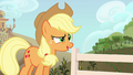 """Applejack """"are y'all thinkin' what I'm thinkin'"""" S4E09.png"""