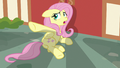 "Fluttershy ""just leave me alone!"" S7E14.png"