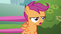 "Scootaloo ""which is actually impossible"" S6E19"