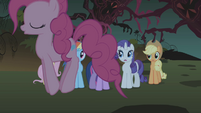 Pinkie Pie bouncing around her friends S1E02