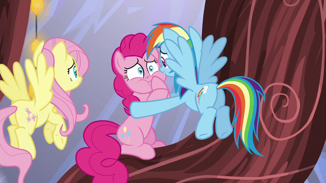 File:Rainbow Dash consoling Pinkie Pie S5E19.png