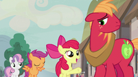 "Apple Bloom ""we're gonna help you"" S7E8"