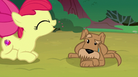 Apple Bloom barks like a dog at Ripley S7E6