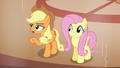 "Applejack ""do either of you even know"" S6E20.png"