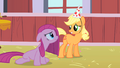 Applejack and Pinkie4 S01E25.png