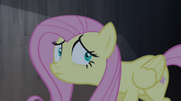 Fluttershy frightened expression S4E03