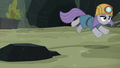 Maud Pie follows the rolling rock S7E4.png